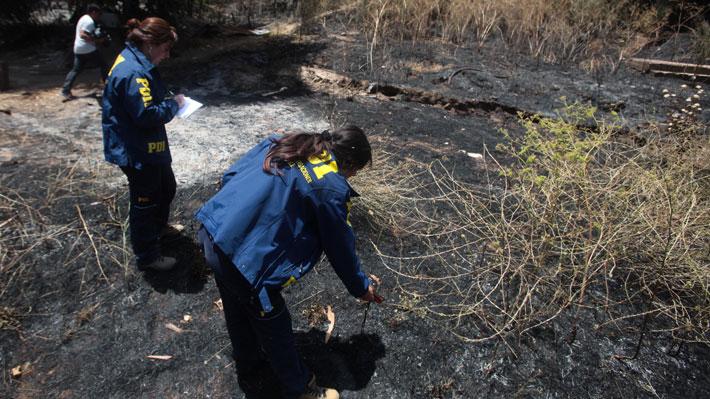 PDI detuvo a 217 personas en cuatro años por delitos asociados a incendios: 45 fueron por quemas en bosques