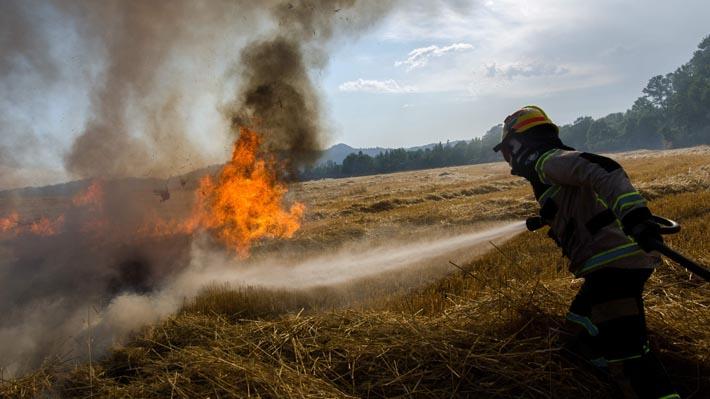 Onemi declara Alerta Roja en Chillán por incendio forestal que amenaza sectores habitados