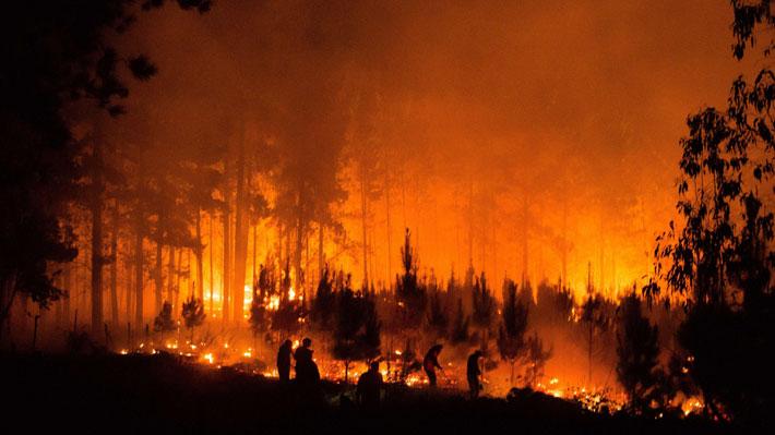 Onemi entrega nuevo reporte de incendios forestales y recuerda que se mantiene aviso por altas temperaturas en Ñuble y Biobío