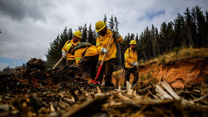 Brigadistas de Conaf vuelven al combate de los incendios forestales tras presentar petitorio por condiciones laborales
