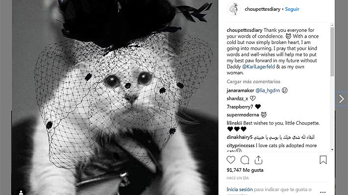 """Choupette, la querida gata del diseñador Karl Lagerfeld, """"agradeció"""" las condolencias de sus seguidores"""