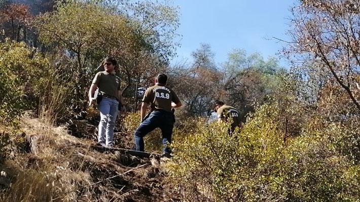 Fiscalía por origen de incendio en Parque Metropolitano: Múltiples focos se activaron de manera paralela