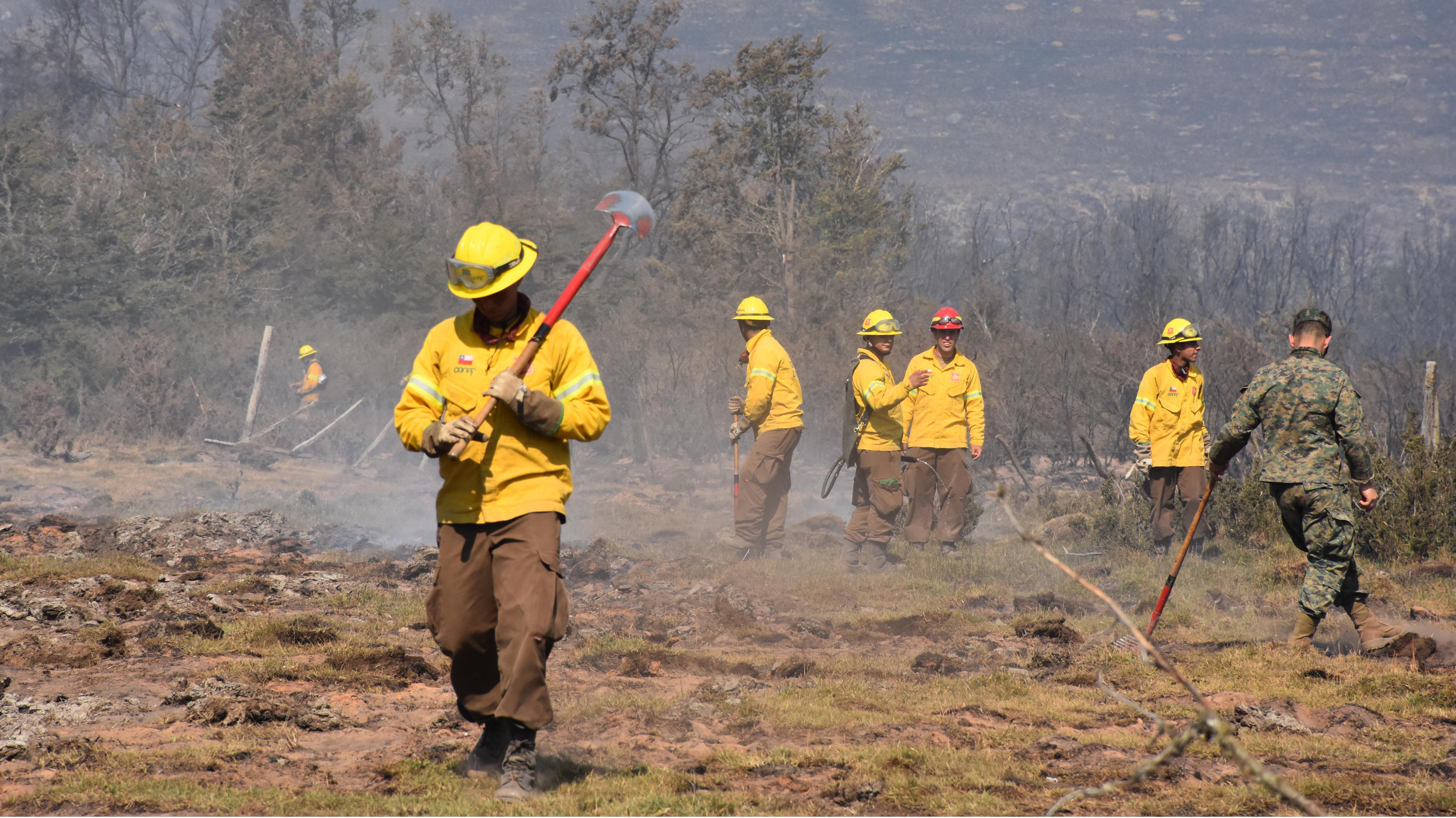 """Onemi declara Alerta Roja en Paredones por incendio forestal que presenta """"rápida propagación"""""""
