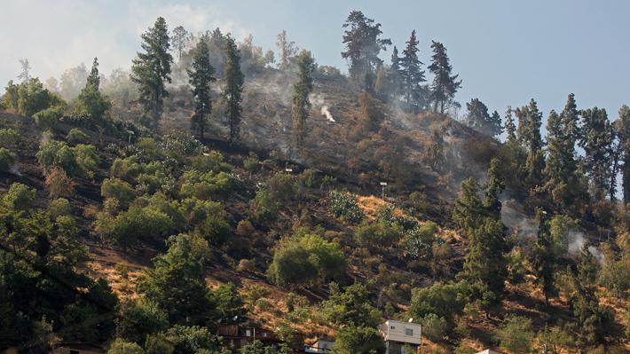 El cerro San Cristóbal será reforestado con nueve mil árboles luego de  la serie de incendios de 2018