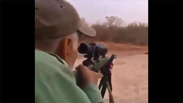Organización animalista difunde crudo video en el que un cazador mata a sangre fría a un león que dormía