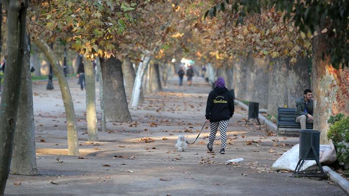 Con mínimas de entre 6° y 7° promedio: Meteorología proyecta cómo será el otoño en Santiago