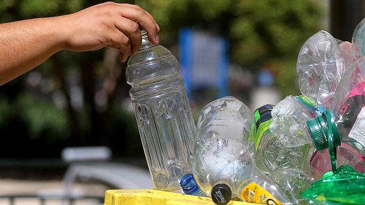 Más allá de dejar las bolsas plásticas: medidas que puedes tomar para llevar una vida amigable con el medio ambiente