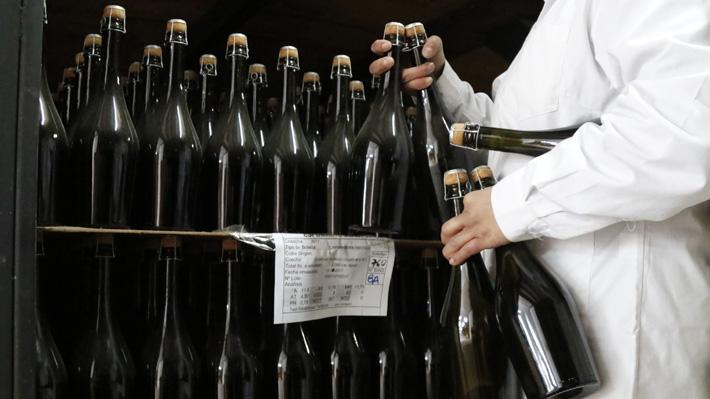 Industria del pisco dice que la solución para bajar consumo de alcohol en jóvenes no es subir los impuestos