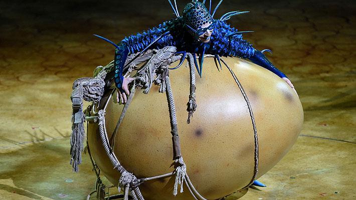Cirque du Soleil regresa a Chile con OVO, un espectáculo que trata sobre la tolerancia y el respeto