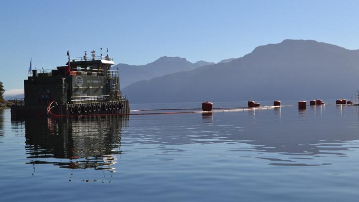 Salmonicultura irrumpe en el canal Beagle y desata controversia sobre permisos ambientales