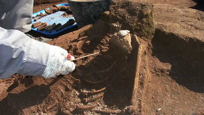 Descubren huella petrificada de un dinosaurio de 200 millones de años en la Antártica