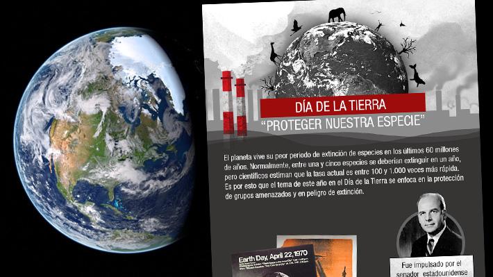 Día de la Tierra: Conoce el estado de conservación de las especies alrededor del mundo