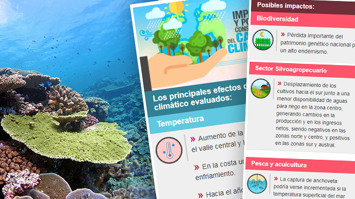 Cambio climático en Chile ¿Cuáles son las principales que consecuencias que podría enfrentar el país?