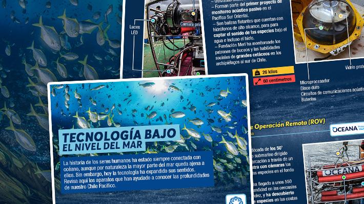 Tecnología bajo el nivel del mar: ¿Cómo son los aparatos que se utilizan para estudiar el océano de nuestro país?