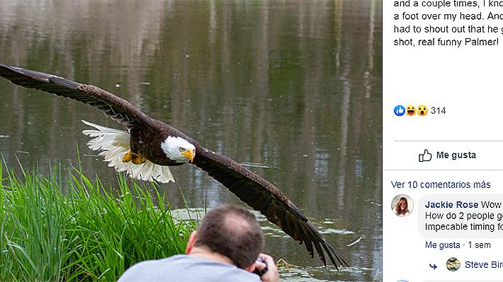 """El acierto de un fotógrafo al captar un águila calva en Canadá que se volvió viral: """"Sentí la brisa de las alas"""""""
