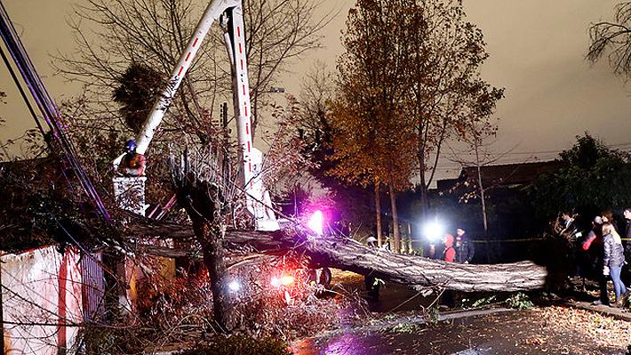 Balance sistema frontal: Vientos dejaron 220 mil clientes sin luz, 650 árboles derribados y vuelos suspendidos en Santiago
