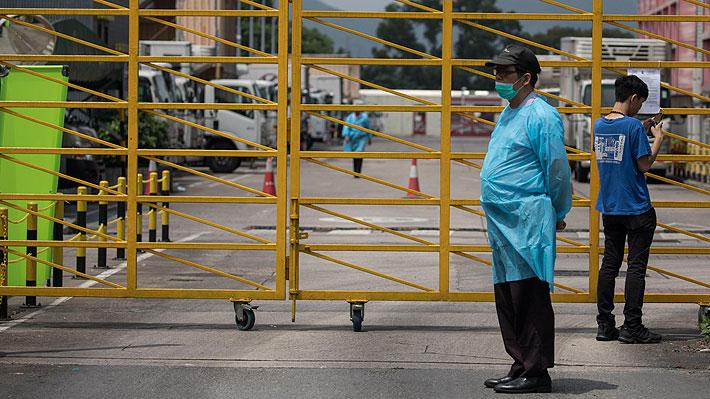 Corea del Norte declara un brote de gripe porcina en la frontera con China