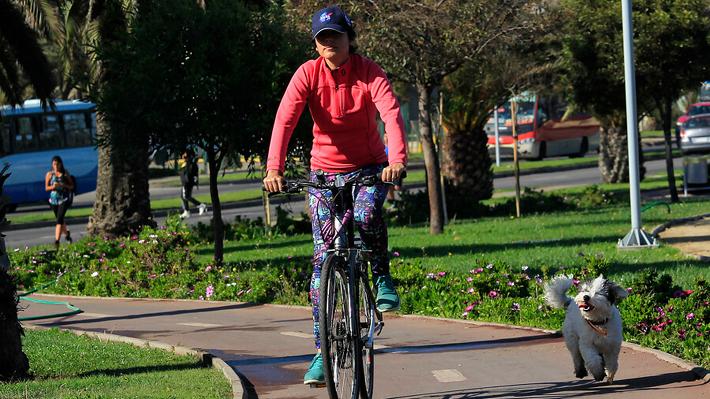 """Uso de la bicicleta en Chile sube a un 10% anual: Medición internacional lo califica como crecimiento """"fuerte"""""""