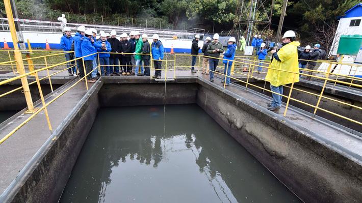 """Restablecimiento total en Osorno: Superintendencia asegura que Essal """"no va a volver a contaminar el agua con petróleo"""""""