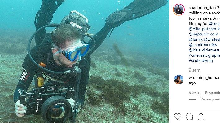 """Fotógrafo británico sorprende con imágenes de una medusa por su gran tamaño: """"Nunca había visto nada como esto"""""""