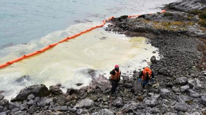 """Greenpeace por derrame de petróleo en Puerto Natales: """"Las consecuencias pueden ser devastadoras"""""""