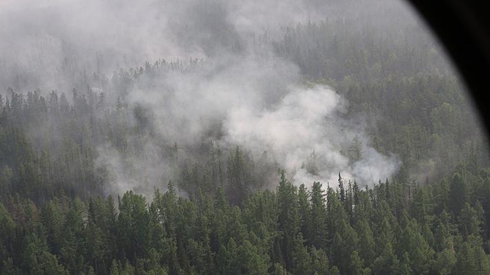 Incendios forestales en Siberia habrían consumido 4,5 millones de hectáreas