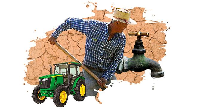 Expandir las exportaciones en tiempos de escasez hídrica: El desafío que preocupa a la agricultura chilena