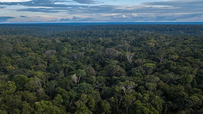 Informe forense indica que líder indígena murió ahogado y no asesinado en la Amazonía brasileña