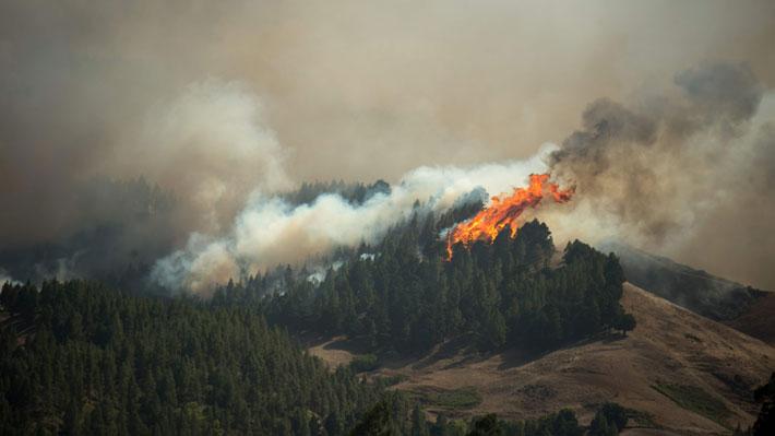 Incendio forestal en isla española deja al menos 6.000 hectáreas quemadas y 9.000 evacuados