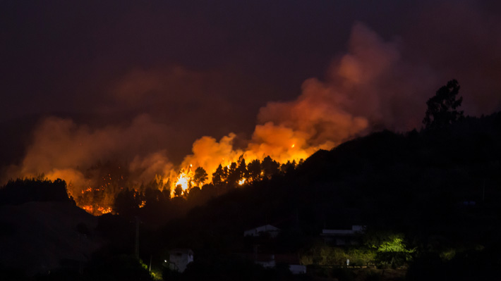 La impactante foto tomada desde el espacio que evidencia el daño dejado por los incendios en Canarias