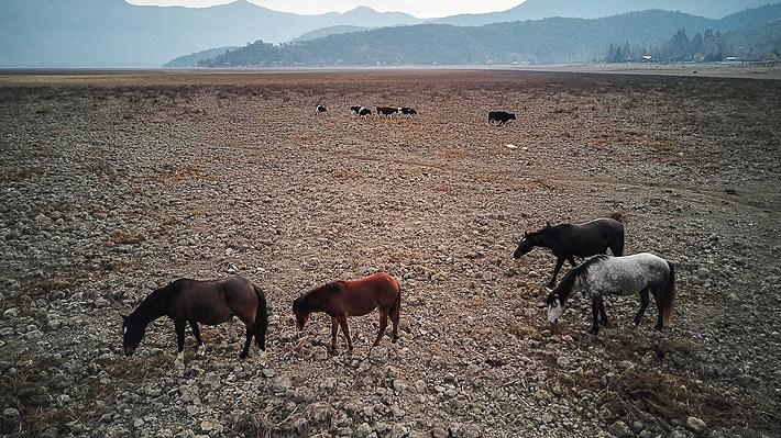 Se agudiza crisis hídrica: Gobierno decreta zona de emergencia agrícola en 17 comunas de la Región Metropolitana