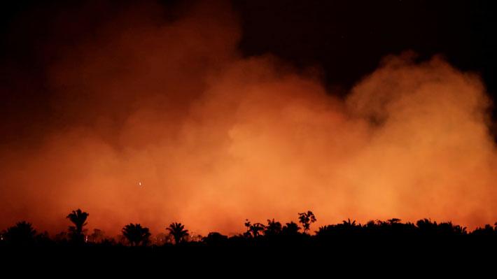 No solo en la Amazonía: Los devastadores incendios forestales que afectan a distintas partes del mundo