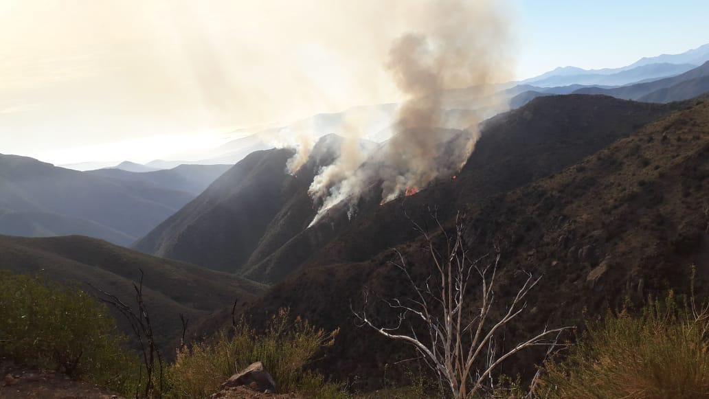 Mantienen Alerta Roja en tres comunas de Valparaíso por incendios que han consumido más de 160 hectáreas