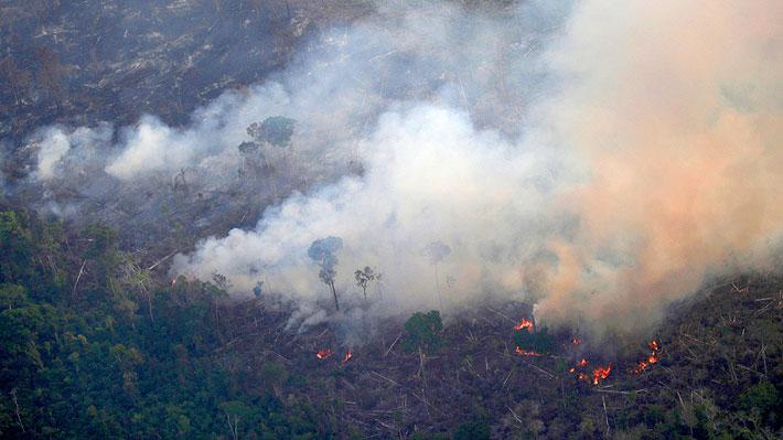 Artistas, deportistas y políticos alertan sobre incendios en la Amazonía con fotos que no corresponden a la realidad