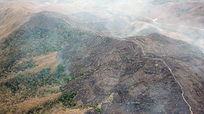 Humo de los incendios en la Amazonía podría llegar esta noche a territorio argentino