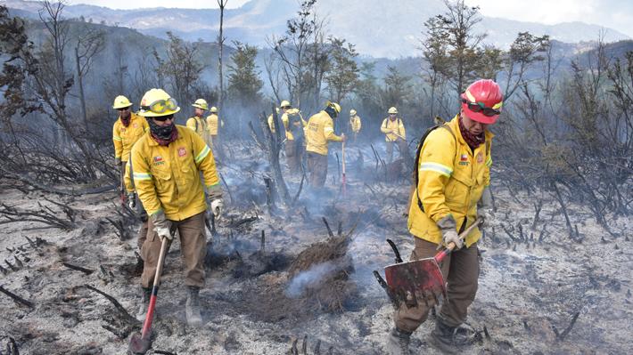 Combatir incendios forestales en medio de la megasequía: Inician acopio de agua y Conaf activa protocolos