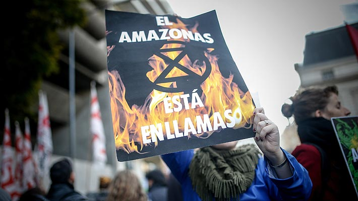 Amazonía: Finlandia propondrá a la UE la prohibición de las importaciones de carne de res brasileña