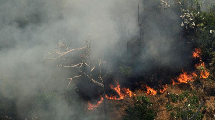 """Las claves de los incendios en la Amazonía, el """"pulmón verde"""" del planeta: Causas, impacto político y rol de Bolsonaro"""