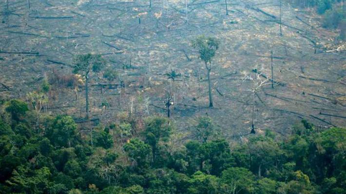 """Francia apuesta por crear un fondo internacional por la Amazonía en vista del """"fracaso"""" del brasileño"""