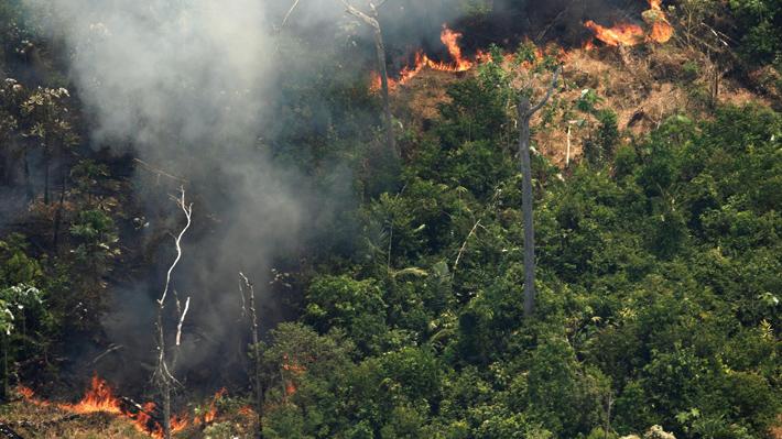 Incendios en la Amazonía y Bolsonaro irrumpen en la agenda de la COP25 a tres meses de la cumbre
