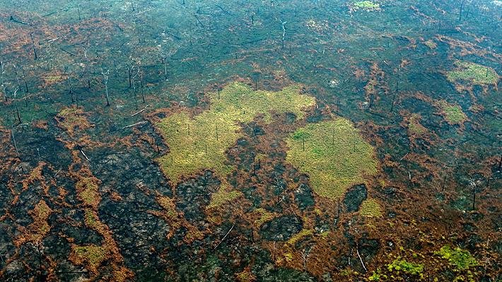 Arde la Amazonía: Focos de incendio aumentan pese al despliegue de aviones y soldados