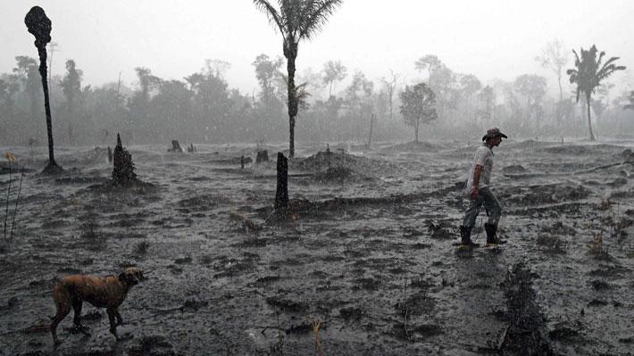 """""""Deforestamos para sobrevivir"""": La confesión de un agricultor brasileño en medio de los incendios en la Amazonía"""