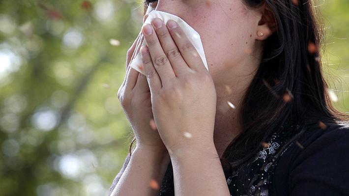 Q se puede tomar para la alergia