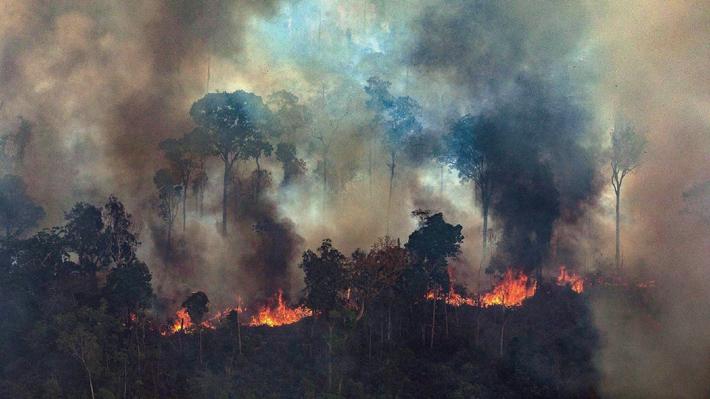 Gobernadores de la Amazonía piden al Gobierno de Bolsonaro que acepte la ayuda económica internacional