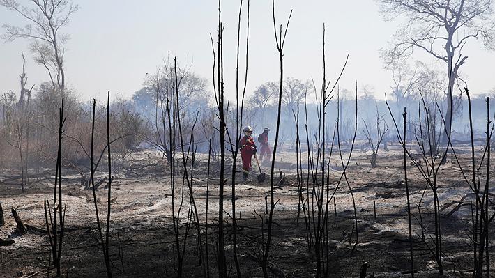 Incendios forestales en Bolivia han consumido más de 1 millón de hectáreas de bosques y pastizales en lo que va del año