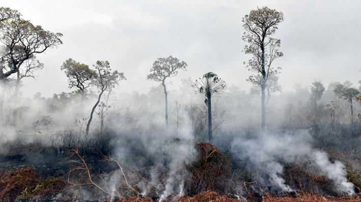 """EE.UU. rechaza ayuda del G7 para combatir incendios en la Amazonía: """"No incluyó consultas con el Presidente Bolsonaro"""""""