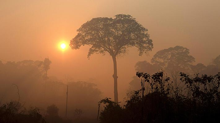 Incendios en Brasil continúan en aumento pese a prohibición de Bolsonaro de realizar quemas en la Amazonía