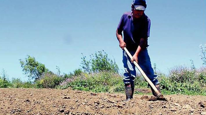 Especialista advierte que en cinco años más Temuco se quedará sin agua