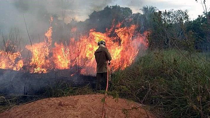 Gobierno de Brasil pretende reducir en un 34% los recursos para la prevención y combate de incendios en 2020
