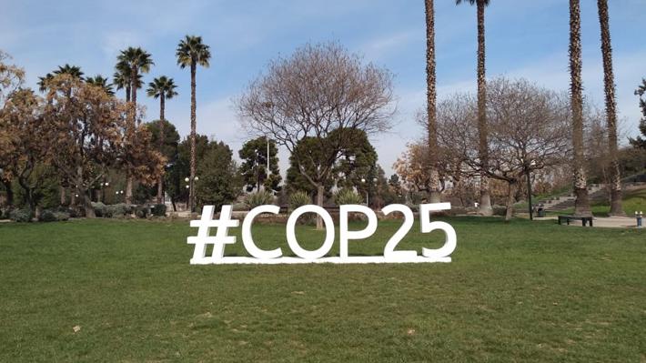 Transporte, salud e inteligencia: Las siete áreas de seguridad para la COP25 que mantiene ocupadas a las autoridades